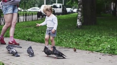 Little boy feeding doves by sunflower seeds in summer park. Mother. Walking - stock footage