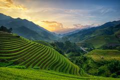Rice fields on terrace in rainy season at Mu Cang Chai, Yen Bai, Vietnam. Ric Stock Photos