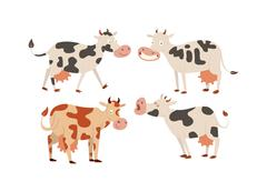 Cartoon cow characters Stock Illustration