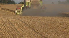 Dust rise from back of harvester combine harvesting mature cereal corn field in Stock Footage