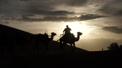 Camels walking on desert at sunset, Dunhuang Stock Footage