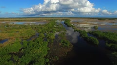 Everglades state park, aerial view at dusk Stock Footage