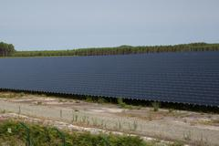 Photovoltaic panels in a large photovoltaic park Stock Photos