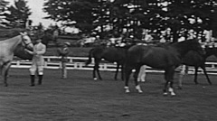 USA 1938: horses before a race Stock Footage