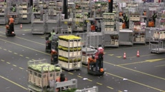 People cargo flowers at Aalsmeer FloraHolland Flower Auction Market Stock Footage