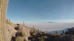 Man Travels on Incahuasi Island (Cactus Island). Salar de Uyuni - the World's Stock Footage