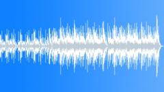 Vibrant Uke (30 sec) Stock Music