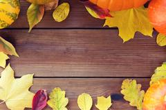 frame of many different fallen autumn leaves - stock photo