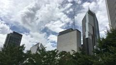 Chicago Skyline Millenium Park Timelapse Stock Footage