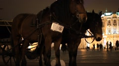 Horse-drawn carriages at night Stock Footage