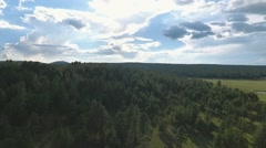 Aerial view of a vast forest area Stock Footage