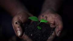 Man holding pile of earth with small plant Stock Footage