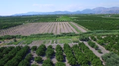 Aerial view of beautiful Neretva valley in southern Croatia Stock Footage