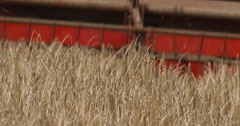 Old combine harvester reel at work in summer wheat field 2K Slow Mo Stock Footage