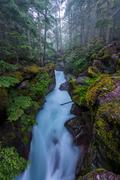 Water Flows Through the Narrows of Avalanche Creek Stock Photos