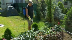 Gardener sprays rose flower bushes near tent on lawn by cordless sprayer Stock Footage