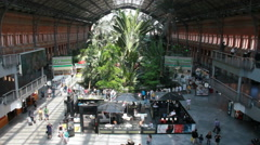 Atocha Station botainical garden in Madrid, Spain Stock Footage
