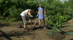 Family planting birch trees in garden. Peaches, vine and flowers on background Stock Footage