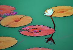 Reflection of colorful Waterlily flower and pads in a cyan pond Stock Illustration