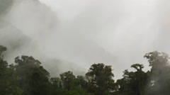 Time-lapse of mist and heavy rain falling onto montane rainforest Stock Footage