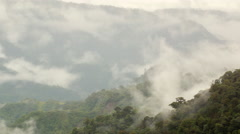 Time-lapse of mist rising from primary montane rainforest Stock Footage