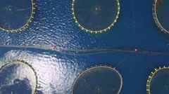 Aerial view of fish farm near the island of Dugi otok Stock Footage