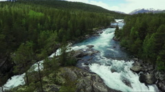 Top Down view of Fast Moving River with Rapids Surrounded by Pine Forest. Stock Footage