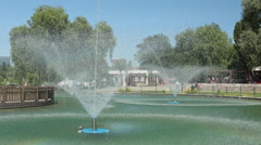 Ornamental pool in the park Stock Footage