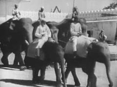 Group of men in turbans riding elephants through village, 1940s Stock Footage