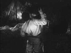 Lion attacking man in camp site, 1940s Stock Footage