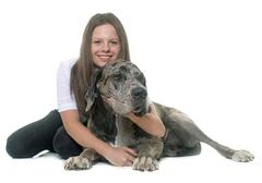 Great Dane and teenager Stock Photos