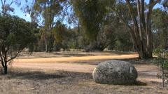 Australia Grampians boulder and gum trees Stock Footage