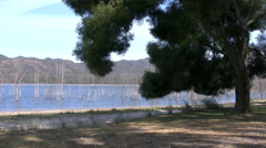 Australia lake in Grampians with tree Stock Footage