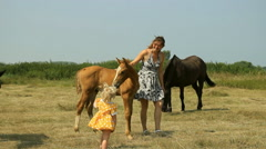 Mom and baby with horses on the field Stock Footage