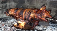 Young pig on the spit grilled on open fire Stock Footage