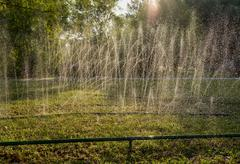 Lawn sprinkler spraying water over green grass. Irrigation system Stock Photos