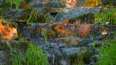Grass growing next to a waterfall on eroded limestone rock Stock Footage
