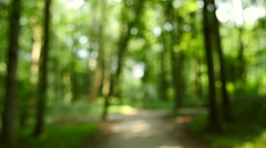 Walking under influence in a forrest, 4k clip. Stock Footage