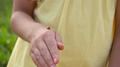 Lady bug on girl hands Stock Footage