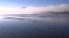 A beautiful foggy morning over the Mississippi River along the Iowa Wisconsin Stock Footage