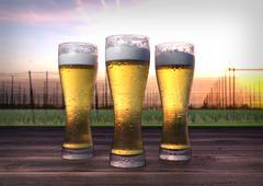 Three glasses of beer with hop-garden background - 3D render Stock Illustration