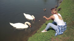 Girl at a reservoir feeding the swans and fish. woman at the lake feeding birds Stock Footage