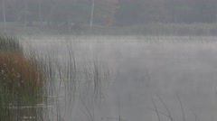 Dense fog on lake water surrounded by bulrush reed plants in autumn morning. 4K - stock footage