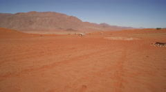 A herd of oryx are making their way through a red stone desert -Namibia Stock Footage