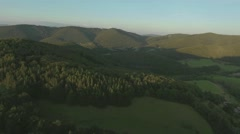Aerial view of forest and green grassland, summer day Stock Footage