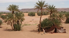 Sahara Landscape With Kids on Soccer Playground Stock Footage