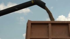 Combine harvester unloading gathered grains into tractor trailer at bright sun - stock footage