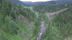 The camera pans over the boreal forest, river stones (quadrocopter) Stock Footage