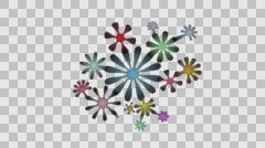 Design: radial flowers Stock Footage