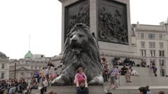 Landseer's Lion Statues In Trafagar Square, London Stock Footage
